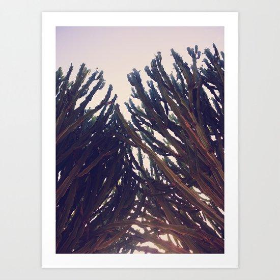 cactus76 Art Print