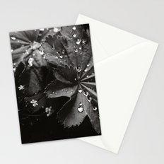 Secret Garden ~ No.10 Stationery Cards