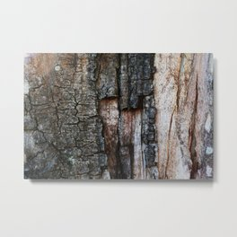 Tree Bark close up Metal Print