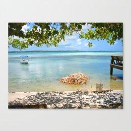 Conch Shells Canvas Print