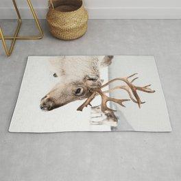 Reindeer with Antlers In Snow   Norway Tromsø Winter Art Print   Arctic Animal Travel Photography Rug