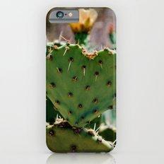 Sonoran Love iPhone 6s Slim Case