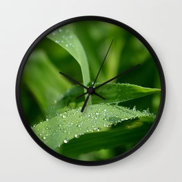 morning grass Wall Clock