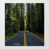 forrest Canvas Prints featuring Forrest by John Monastero