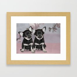 Chihuahua puppies Framed Art Print