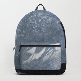 Lizard on metal Backpack