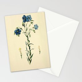 Flower 14 Narbonne Flax  linum narbonense17 Stationery Cards