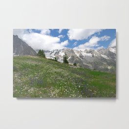 Alpine Landscape Flowering Meadows Snowy Mountains Metal Print