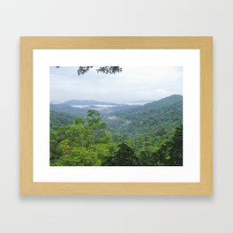 Lao Jungle Framed Art Print