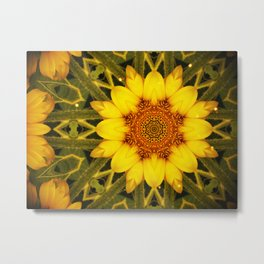 Sunflower Daze Metal Print