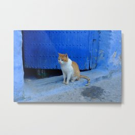 Moroccan Kitty Metal Print
