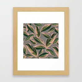 Calathea Leaves Pattern- Pink Green Gray Framed Art Print