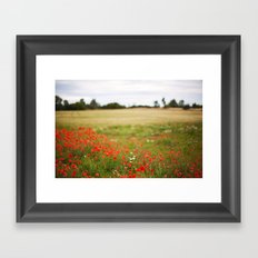 Poppy field. Framed Art Print