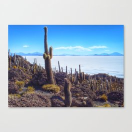 Salar de Uyuni in Bolivia Canvas Print
