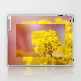 Acer inflorescence flowerets detail Laptop & iPad Skin