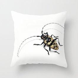 Longhorn Beetle Throw Pillow