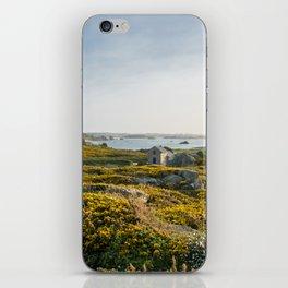 Brittany iPhone Skin
