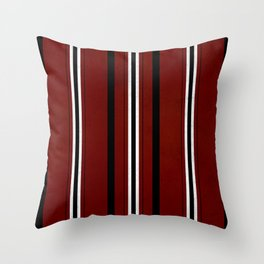 The Levite cloth of a Hebrew slave! Throw Pillow