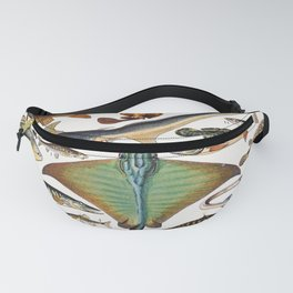 Adolphe Millot - Poissons A - French vintage nautical poster Fanny Pack