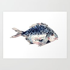 Fairytale Fish Art Print