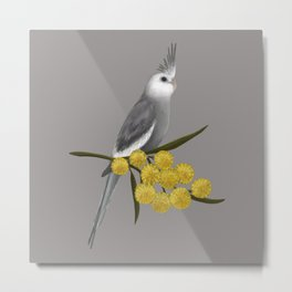 White Faced Cockatiel Metal Print