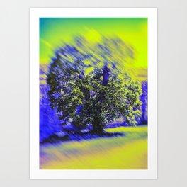 The Tree Of Winter Art Print