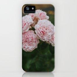 Sweet Lullabies iPhone Case