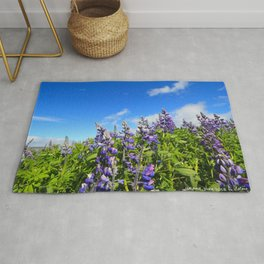 Summer Lupine in Iceland Rug