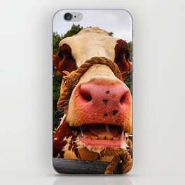 Cow Portrait iPhone Skin