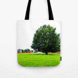 Windswept - Tree in field (Wiltshire, England) Tote Bag