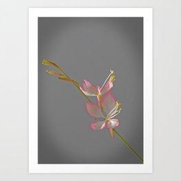 DREAMY BUTTERFLY PLANT Art Print