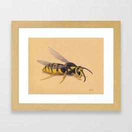 Wasp by Lars Furtwaengler | Colored Pencil / Pastel Pencil | 2011 Framed Art Print