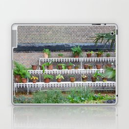 Pots and plants Laptop & iPad Skin