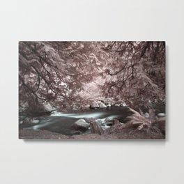 Lynn Headwaters in Infrared Metal Print