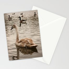 Mortimer the Swan Stationery Cards