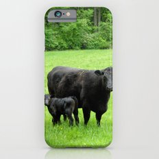 Mama and her Baby iPhone 6s Slim Case