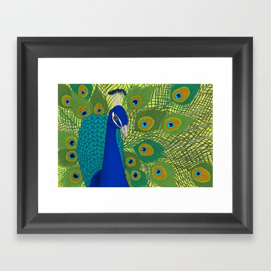 Peacock in Colour Framed Art Print