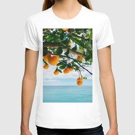 Amalfi Coast Oranges IV T-shirt