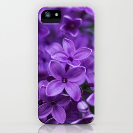 Lilac in Bloom iPhone Case
