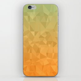 Blue and Orange Ombre iPhone Skin