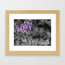 Bee Love Framed Art Print
