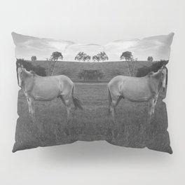 Donkeys Pillow Sham