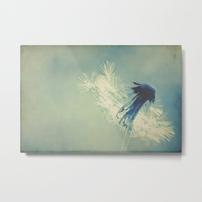 to live's to fly Metal Print
