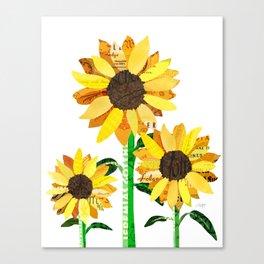 Sunflower Collage Canvas Print