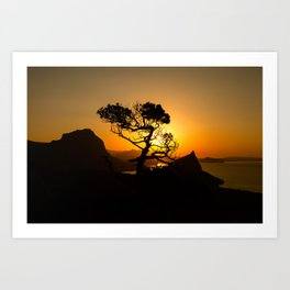 Sunrise in mountains with tree and sea Art Print