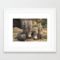 otters Framed Art Prints featuring Otters  by Rob Hawkins Photography
