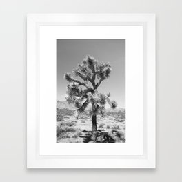 Joshua Tree Monochrome, No. 3 Framed Art Print