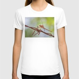 Nature in pastel shades T-shirt