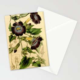 Thunbergia chrysops Stationery Cards