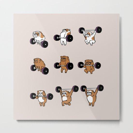 OLYMPIC LIFTING English Bulldog Metal Print